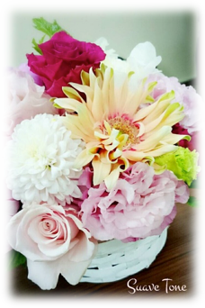 flower_pic02